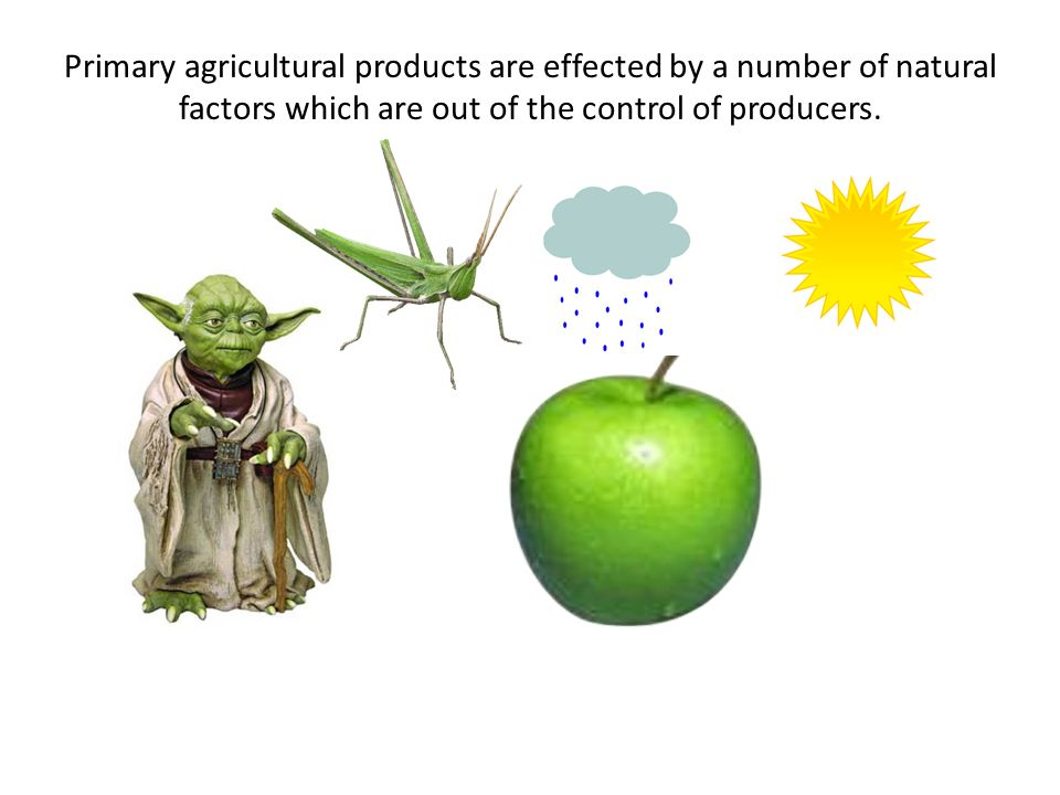 Primary agricultural products are effected by a number of natural factors which are out of the control of producers.