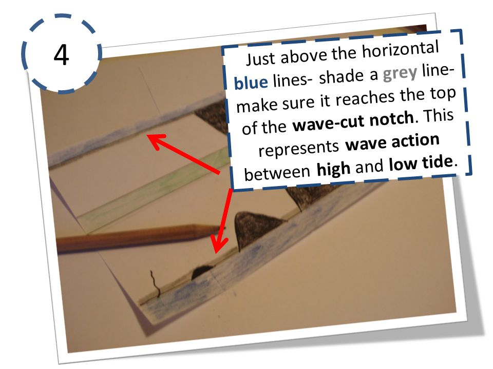4 Just above the horizontal blue lines- shade a grey line- make sure it reaches the top of the wave-cut notch.