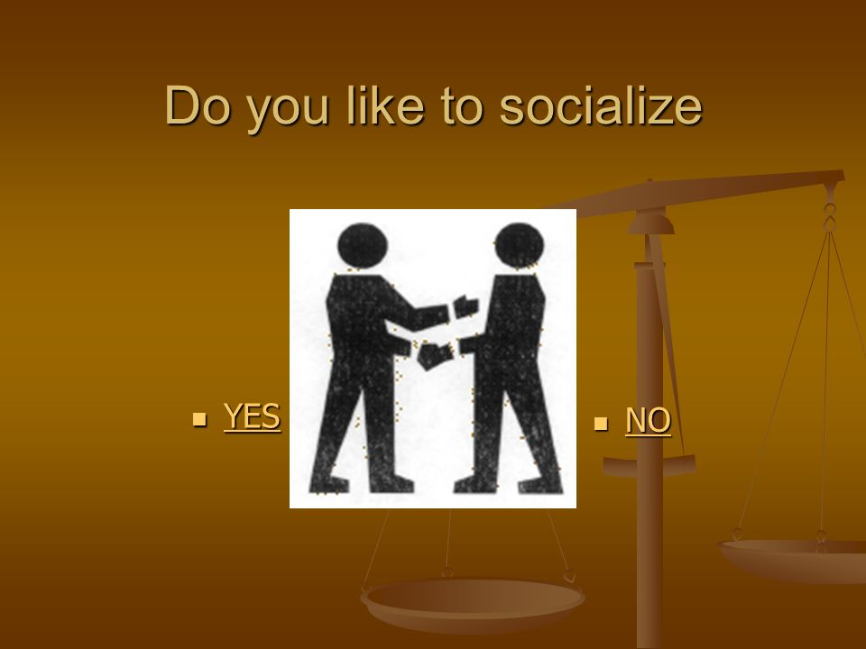 Do you like to socialize YES YES YES NO