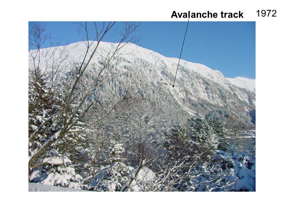 Avalanche track 1972