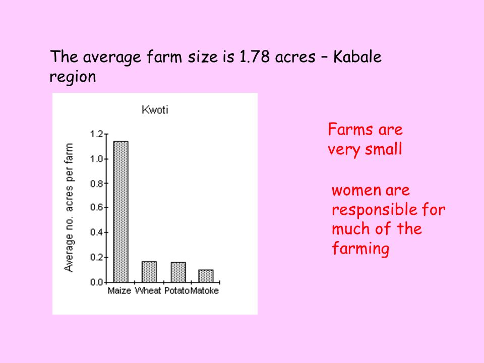 The average farm size is 1.78 acres – Kabale region Farms are very small women are responsible for much of the farming