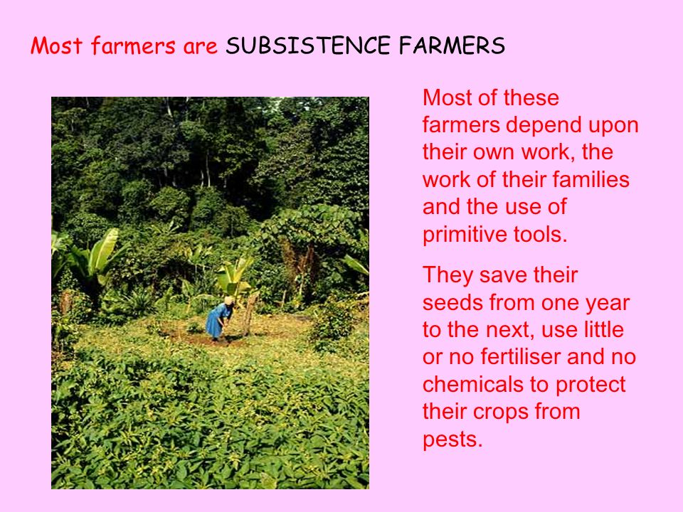 Most of these farmers depend upon their own work, the work of their families and the use of primitive tools.