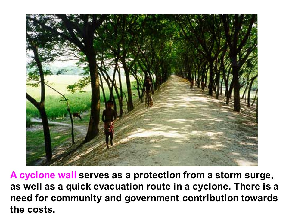 A cyclone wall serves as a protection from a storm surge, as well as a quick evacuation route in a cyclone. There is a need for community and governme