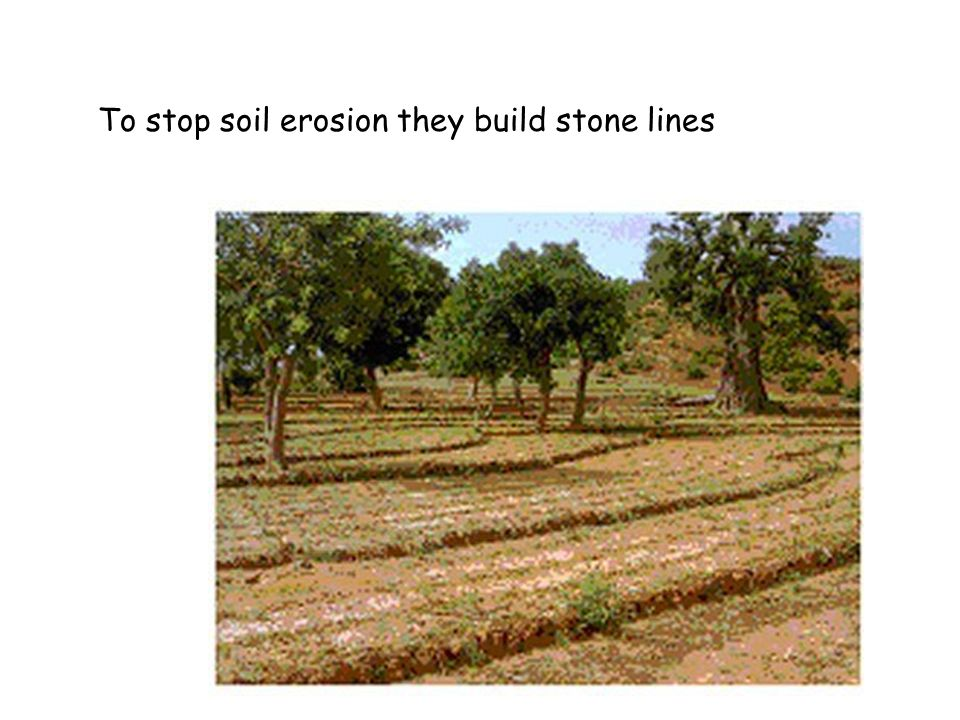 … and in the short rainy season soil erosion leads to gullying.