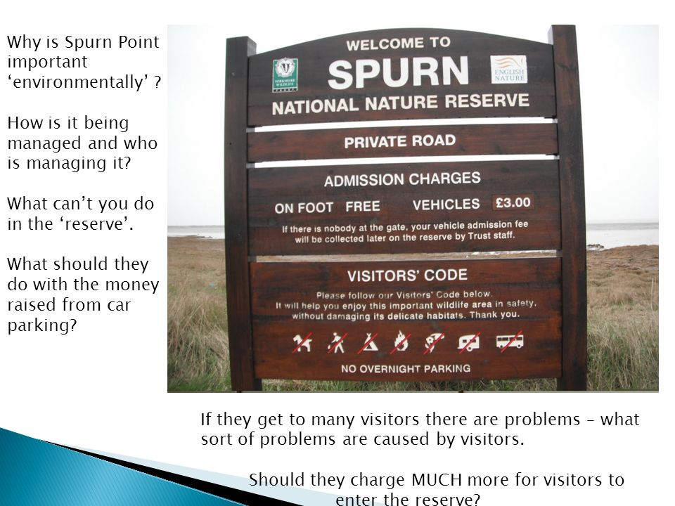 Why is Spurn Point important environmentally . How is it being managed and who is managing it.