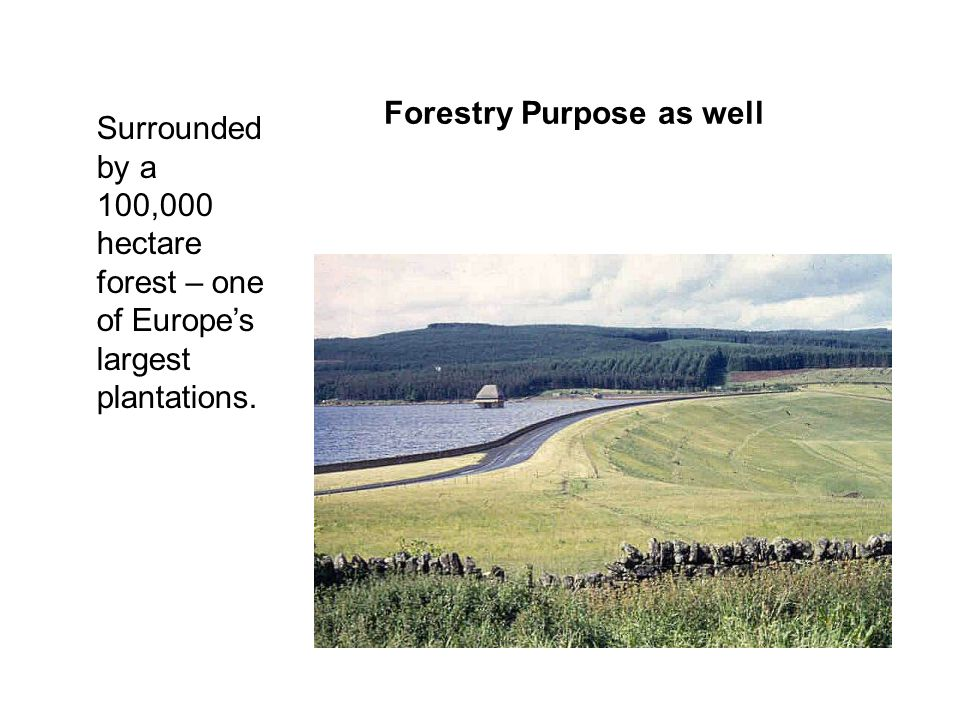 Surrounded by a 100,000 hectare forest – one of Europes largest plantations. Forestry Purpose as well