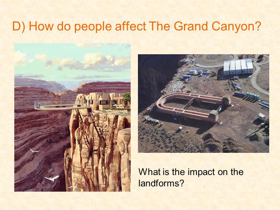 D) How do people affect The Grand Canyon? What is the impact on the landforms?