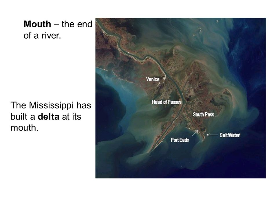 Mouth – the end of a river. The Mississippi has built a delta at its mouth.