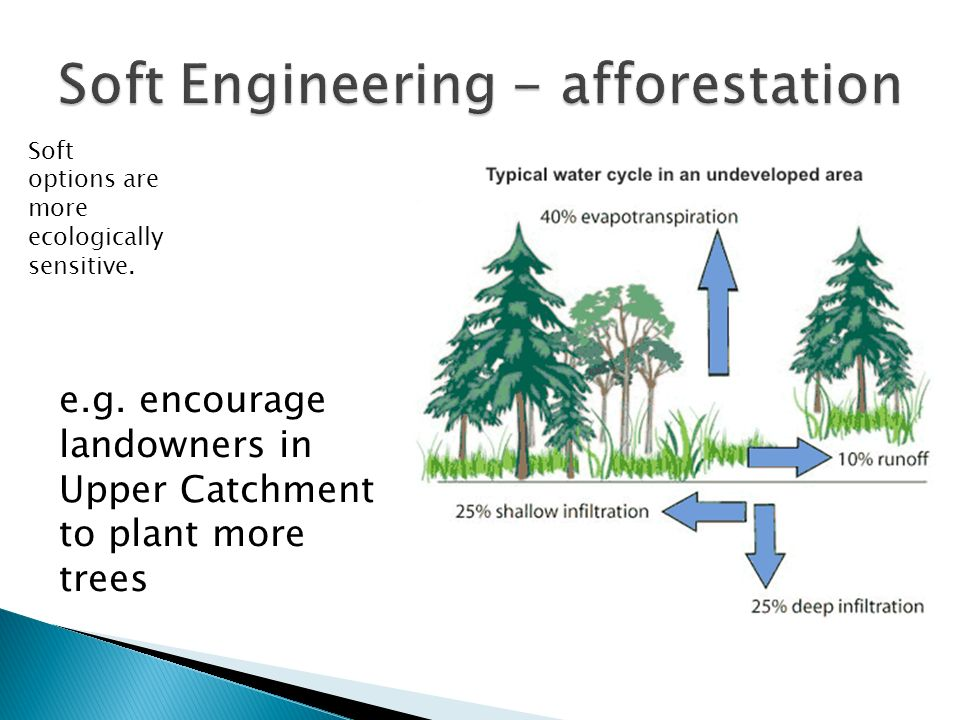 Soft options are more ecologically sensitive. e.g. encourage landowners in Upper Catchment to plant more trees