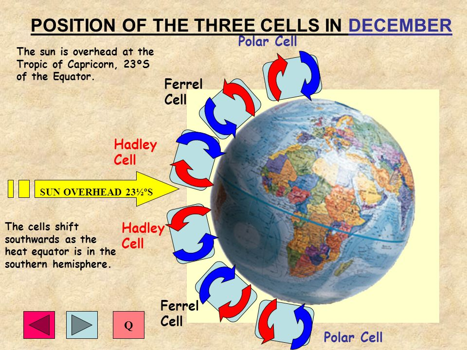 POSITION OF THE THREE CELLS IN DECEMBER Polar Cell Hadley Cell Ferrel Cell Polar Cell Ferrel Cell Hadley Cell SUN OVERHEAD 23½ºS The sun is overhead a