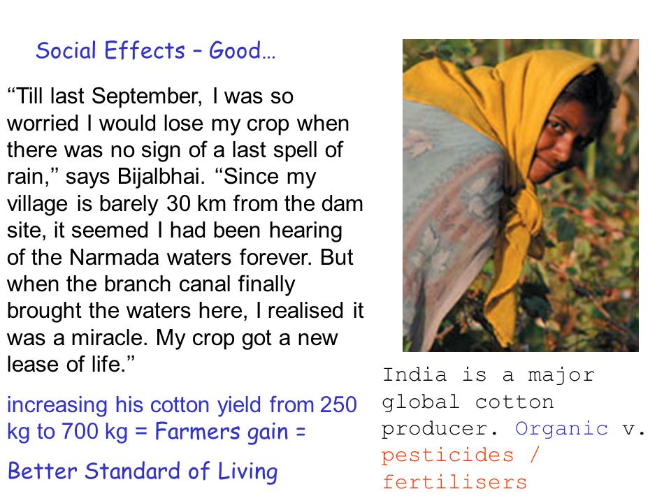 Social Effects – Good… Till last September, I was so worried I would lose my crop when there was no sign of a last spell of rain, says Bijalbhai.