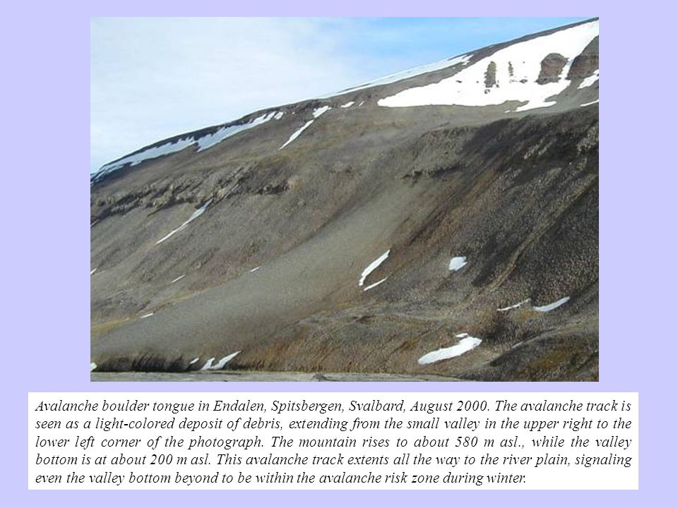 Avalanche boulder tongue in Endalen, Spitsbergen, Svalbard, August 2000. The avalanche track is seen as a light-colored deposit of debris, extending f