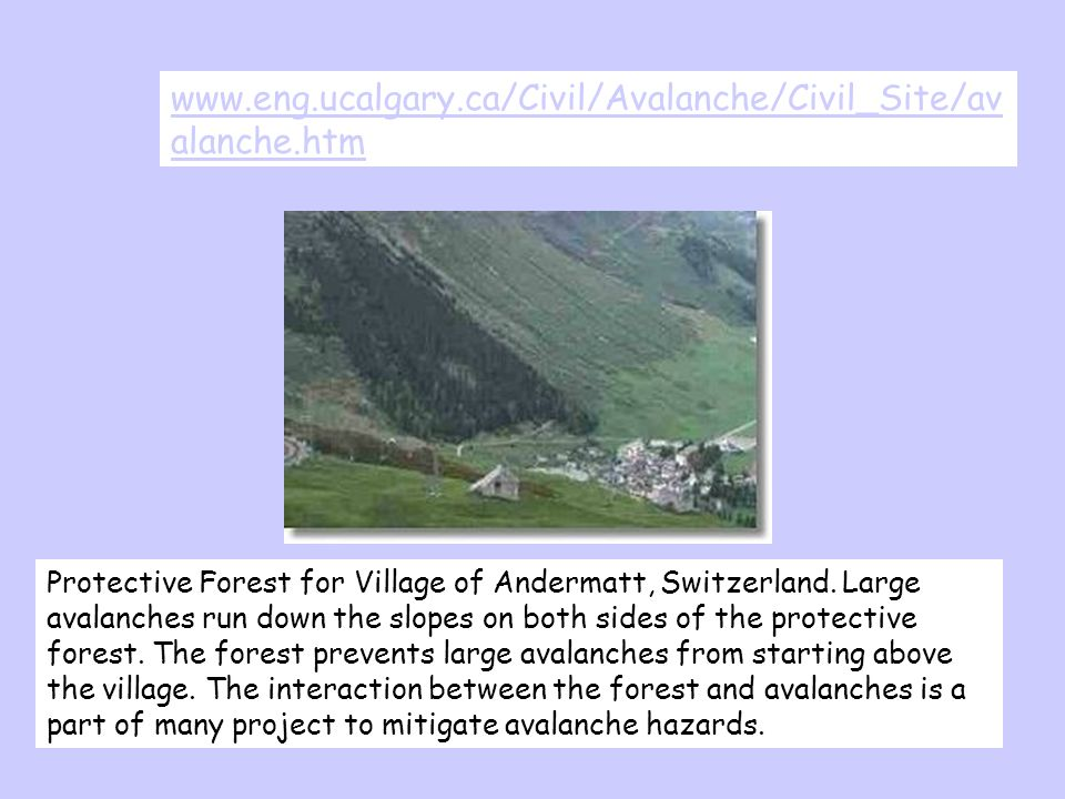 www.eng.ucalgary.ca/Civil/Avalanche/Civil_Site/av alanche.htm Protective Forest for Village of Andermatt, Switzerland. Large avalanches run down the s