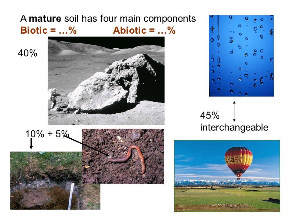 A mature soil has four main components Biotic = …% Abiotic = …% 45% interchangeable 40% 10% + 5%