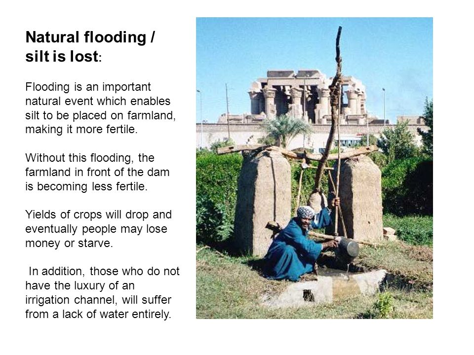 Natural flooding / silt is lost : Flooding is an important natural event which enables silt to be placed on farmland, making it more fertile. Without