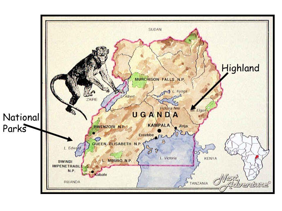 Regional centre – Jinja The region being studied