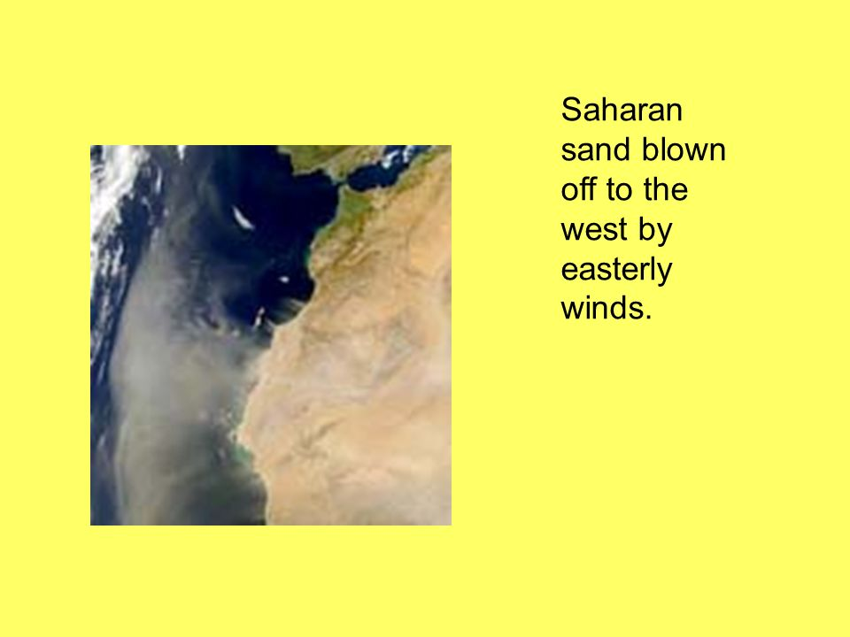 Deserts lie on the West side of continents…. In zones where the prevailing winds come from the east. 2.