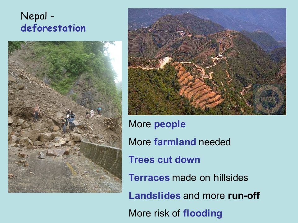 Nepal - deforestation More people More farmland needed Trees cut down Terraces made on hillsides Landslides and more run-off More risk of flooding