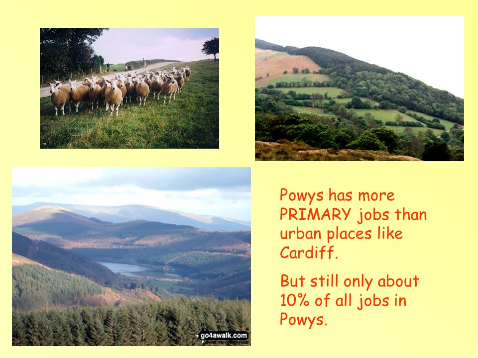 Powys has more PRIMARY jobs than urban places like Cardiff.