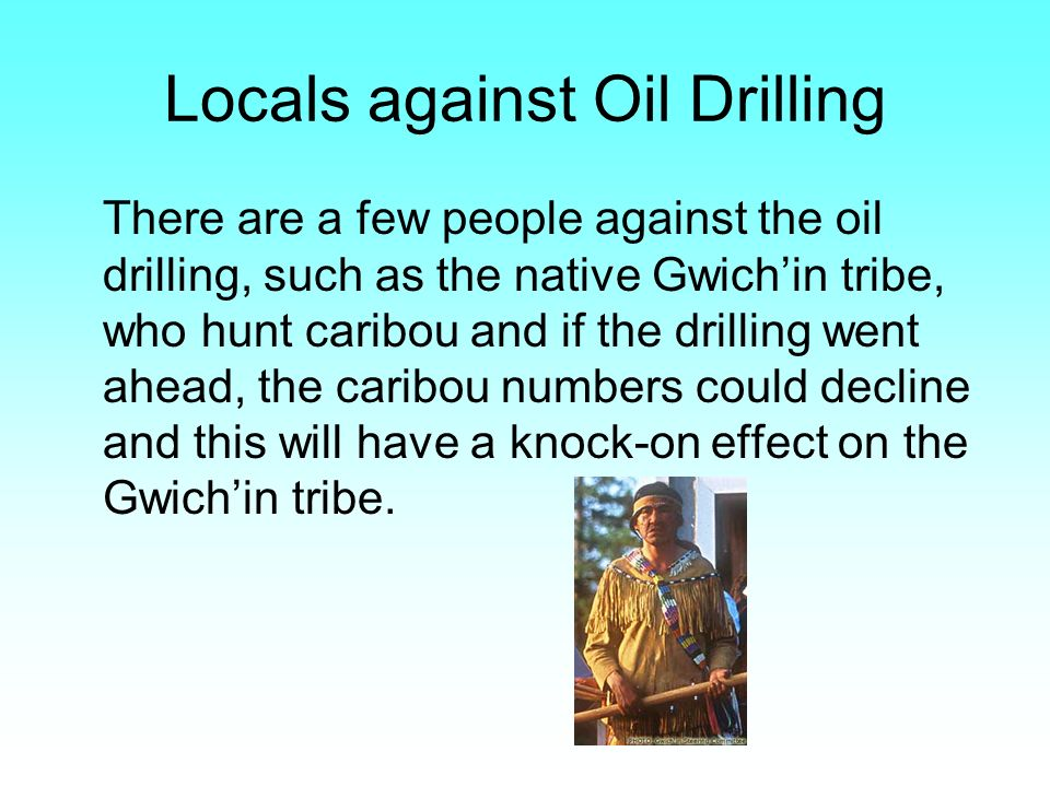 Locals against Oil Drilling There are a few people against the oil drilling, such as the native Gwichin tribe, who hunt caribou and if the drilling we