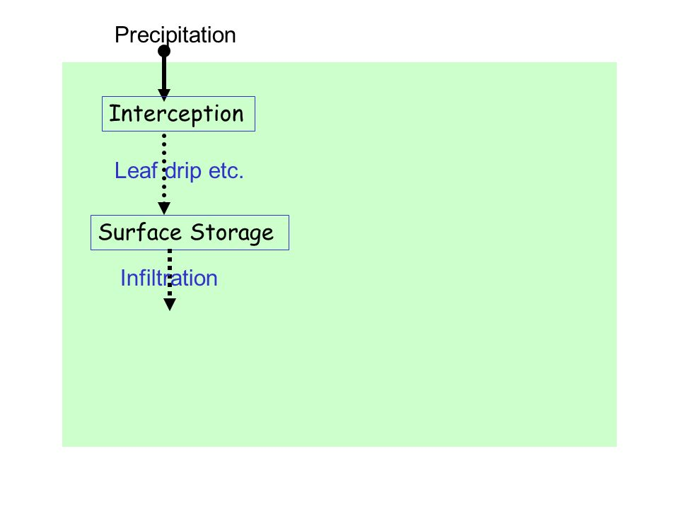Precipitation Interception Leaf drip etc. Surface Storage Infiltration