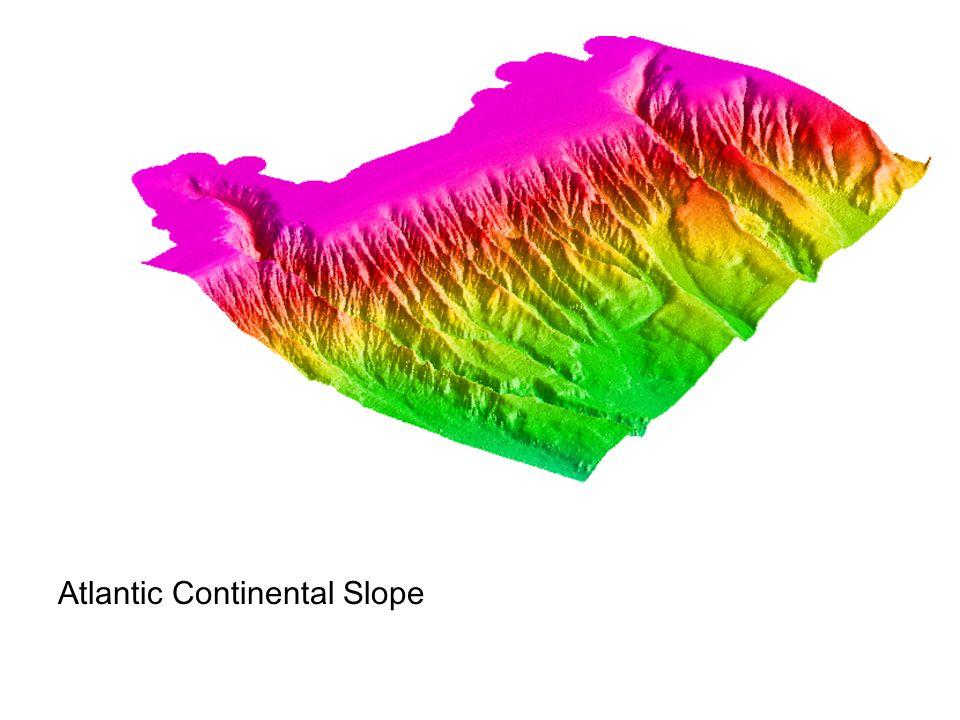 Atlantic Continental Slope