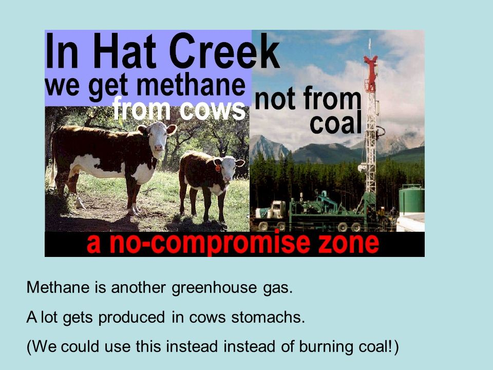 Methane is another greenhouse gas. A lot gets produced in cows stomachs. (We could use this instead instead of burning coal!)