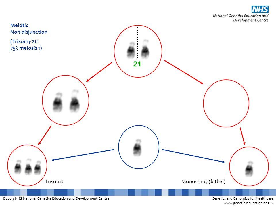 © 2009 NHS National Genetics Education and Development CentreGenetics and Genomics for Healthcare www.geneticseducation.nhs.uk Meiotic Non-disjunction (Trisomy 21: 75% meiosis 1) TrisomyMonosomy (lethal)