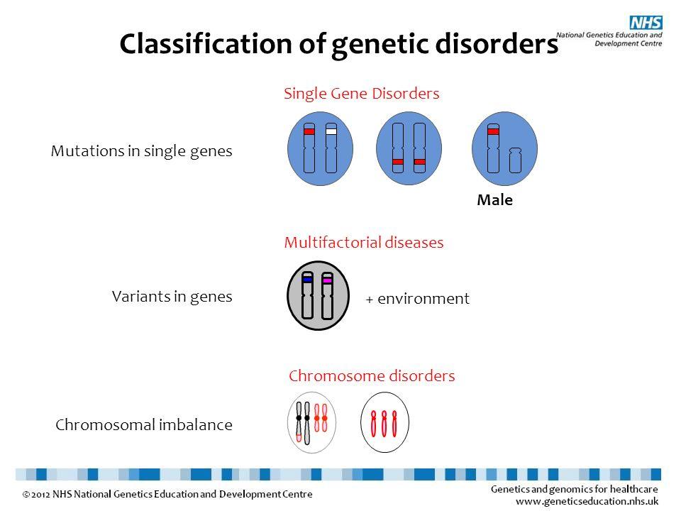 Classification of genetic disorders Male Mutations in single genes Variants in genes Chromosomal imbalance Single Gene Disorders Multifactorial diseas