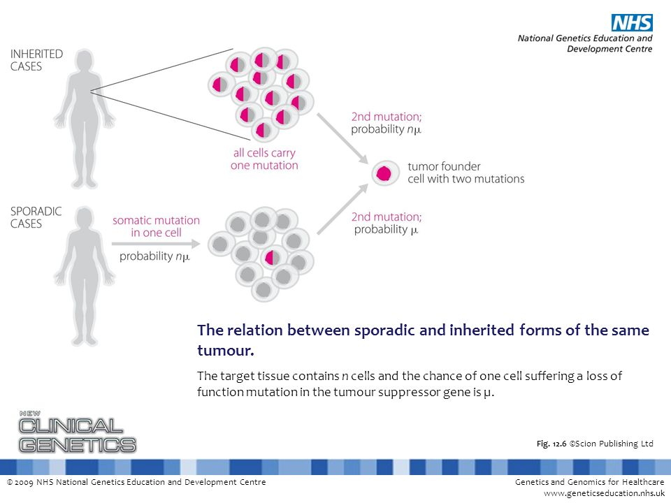 © 2009 NHS National Genetics Education and Development CentreGenetics and Genomics for Healthcare www.geneticseducation.nhs.uk Fig. 12.6 ©Scion Publis
