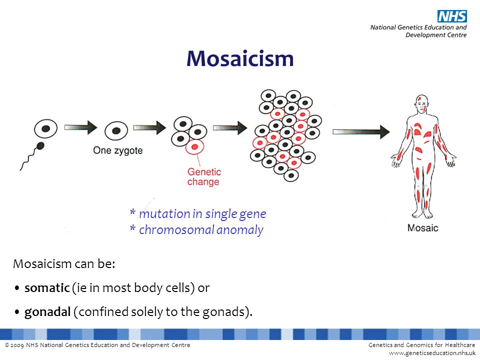 © 2009 NHS National Genetics Education and Development CentreGenetics and Genomics for Healthcare www.geneticseducation.nhs.uk Normal disomy Mitosis Non-disjunction Normal disomyTrisomyMonosomy (lethal to cell) Somatic mosaicism (eg trisomy 21) as a result of mitotic non-disjunction