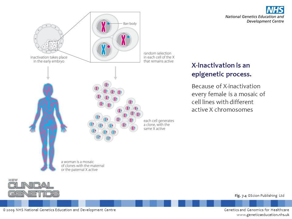 © 2009 NHS National Genetics Education and Development CentreGenetics and Genomics for Healthcare www.geneticseducation.nhs.uk Fig. 7.4 ©Scion Publish