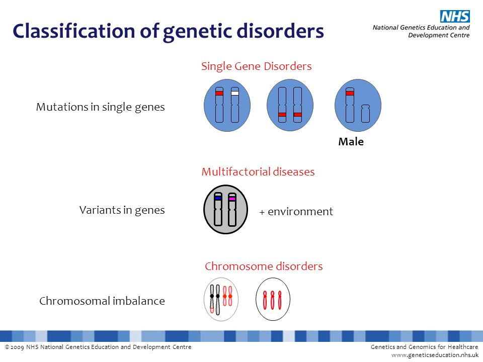 © 2009 NHS National Genetics Education and Development CentreGenetics and Genomics for Healthcare www.geneticseducation.nhs.uk Classification of genet