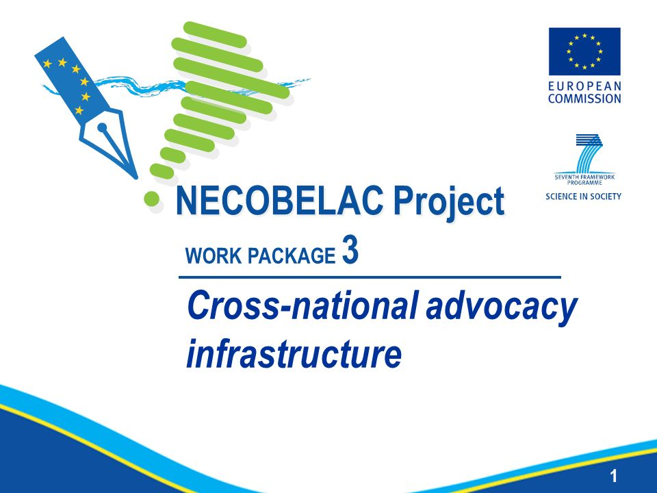 1 NECOBELAC Project WORK PACKAGE 3 Cross-national advocacy infrastructure