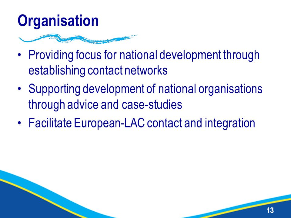 13 Organisation Providing focus for national development through establishing contact networks Supporting development of national organisations throug