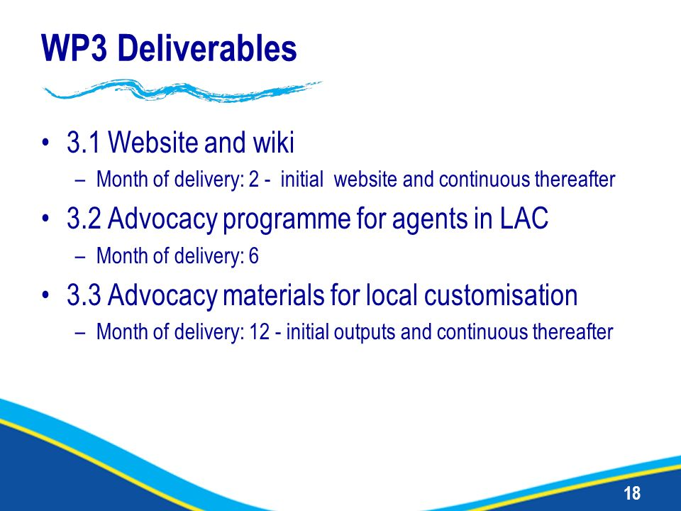 18 WP3 Deliverables 3.1 Website and wiki –Month of delivery: 2 - initial website and continuous thereafter 3.2 Advocacy programme for agents in LAC –M