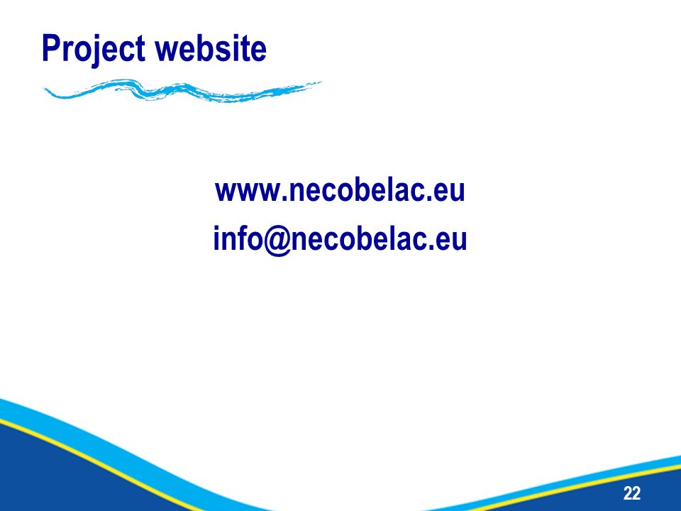 22 Project website