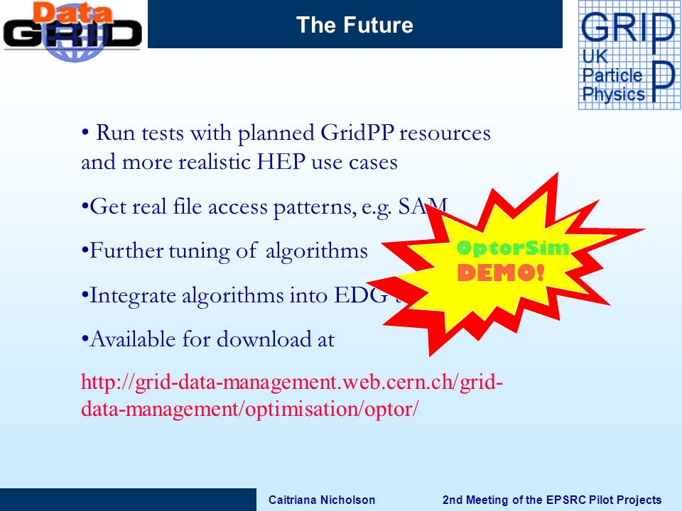 Caitriana Nicholson 2nd Meeting of the EPSRC Pilot Projects The Future Run tests with planned GridPP resources and more realistic HEP use cases Get real file access patterns, e.g.