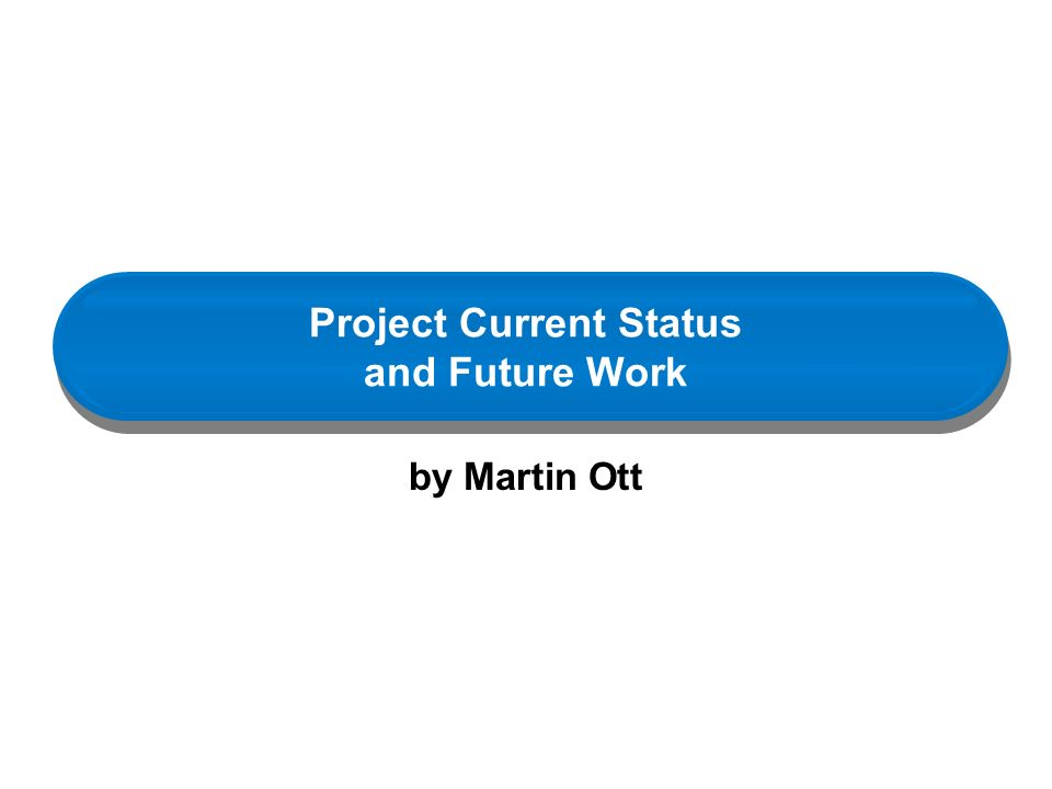 Project Current Status and Future Work by Martin Ott