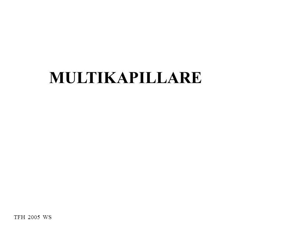 MULTIKAPILLARE