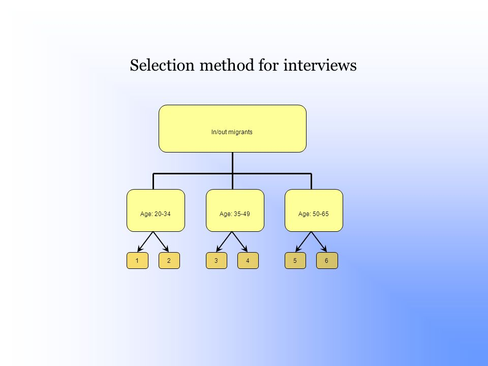 In/out migrants Age: 20-34Age: 35-49Age: 50-65 256134 Selection method for interviews