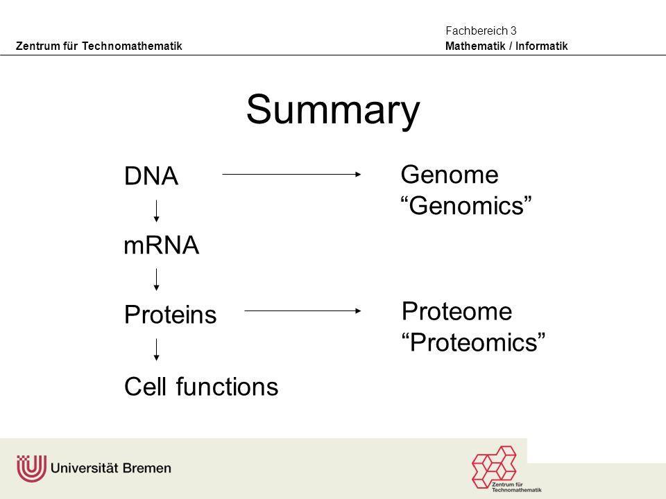 Zentrum für Technomathematik Mathematik / Informatik Fachbereich 3 Summary DNA mRNA Proteins Cell functions Genome Genomics Proteome Proteomics