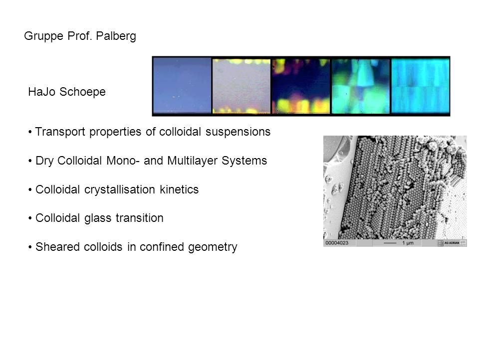Gruppe Prof. Palberg HaJo Schoepe Transport properties of colloidal suspensions Dry Colloidal Mono- and Multilayer Systems Colloidal crystallisation k