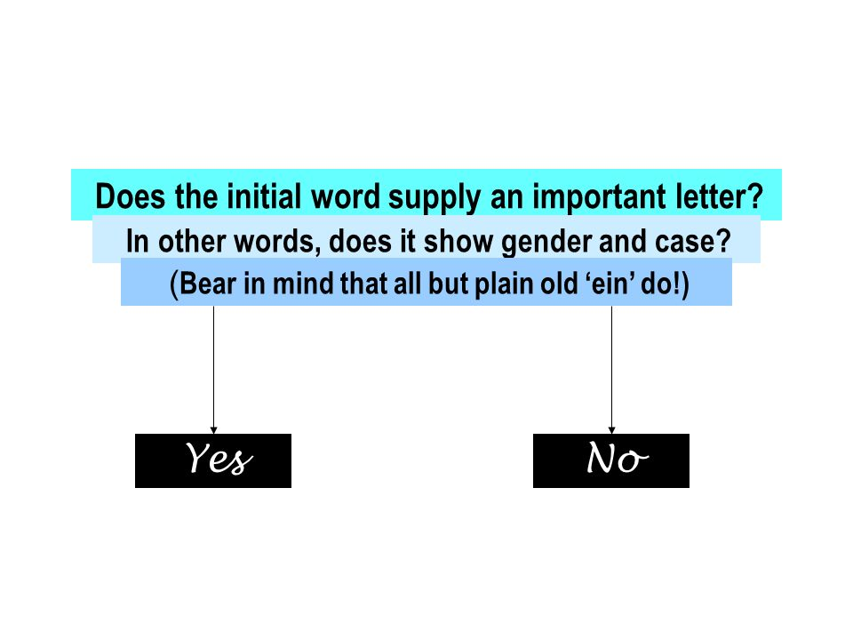 Does the initial word supply an important letter? In other words, does it show gender and case? ( Bear in mind that all but plain old ein do!) YesNo