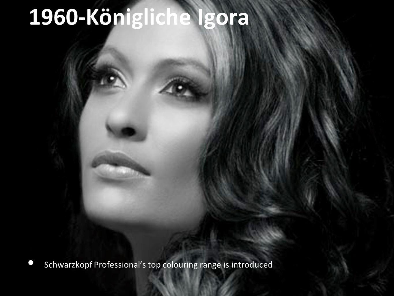 1960-Königliche Igora (Igora Royal) Schwarzkopf Professionals top colouring range is introduced