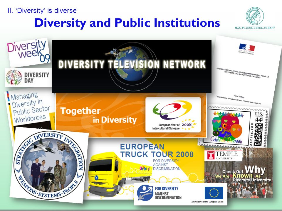Diversity and Public Institutions II. Diversity is diverse