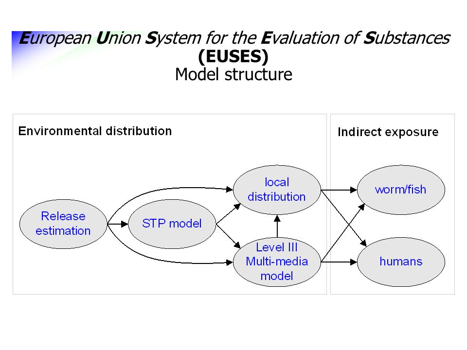 European Union System for the Evaluation of Substances (EUSES) Model structure