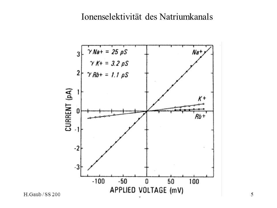 H.Gaub / SS 2007BPZ§4.35 Ionenselektivität des Natriumkanals