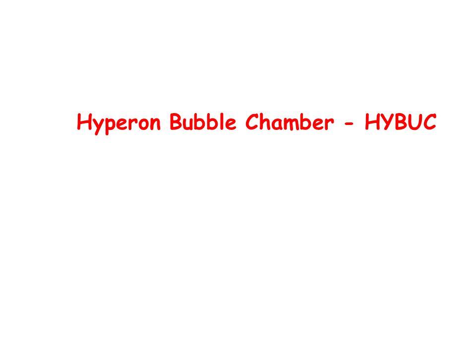 Hyperon Bubble Chamber - HYBUC