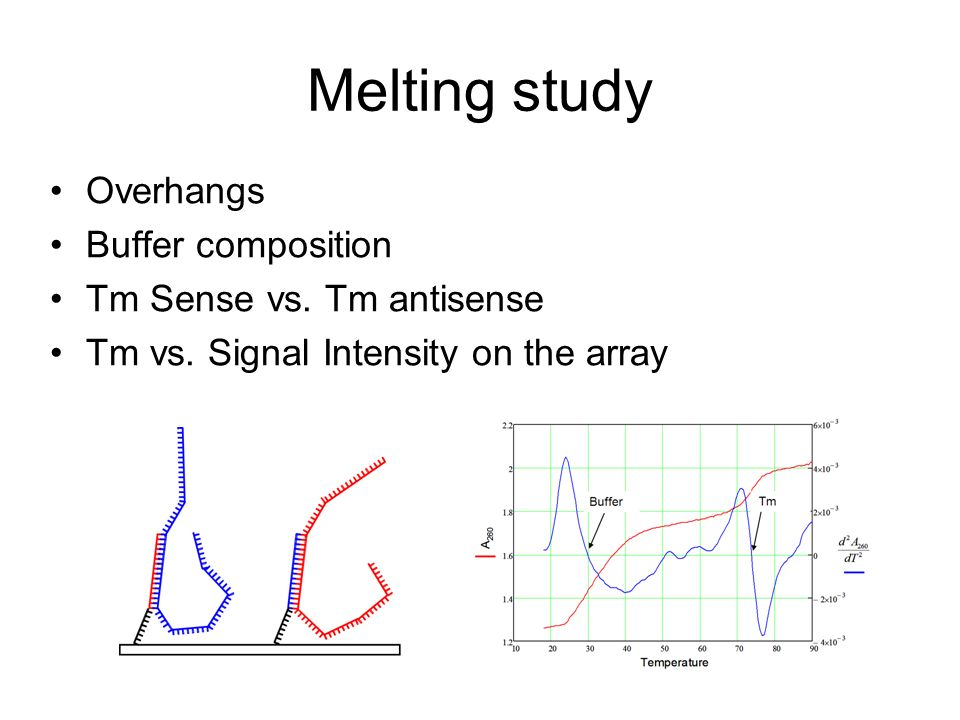 Melting study Overhangs Buffer composition Tm Sense vs. Tm antisense Tm vs. Signal Intensity on the array